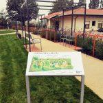 giardino-della-felicita-cidas16