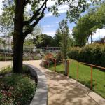 giardino-della-felicita-cidas17