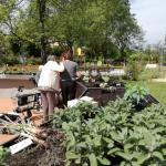 giardino-della-felicita-cidas19