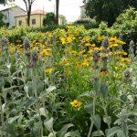 giardino-della-felicita-cidas5