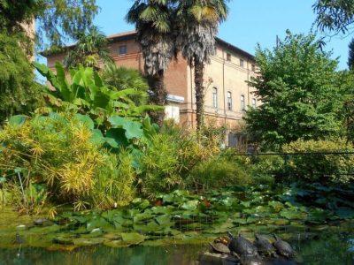 Il Centro Diurno La Rivana vince il Concorso per celebrare i 250 anni dell'Orto Botanico